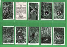 Collectible Tobacco Cigarette cards set Wild Birds at Home 1935